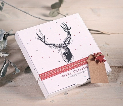 christmas-kit-gift-box-2210-m